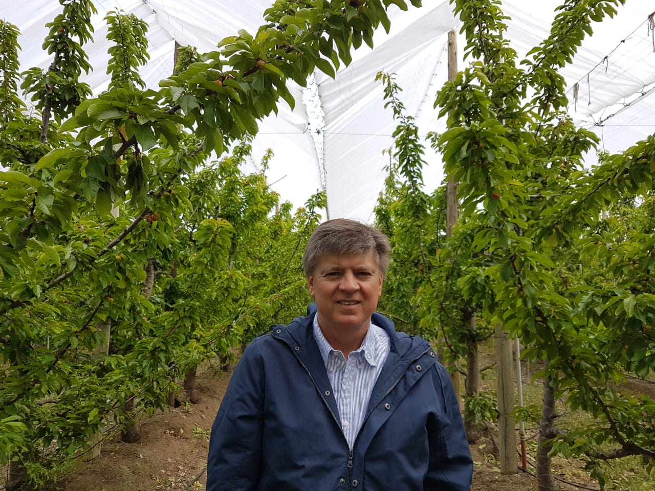 Adolfo Storni, Presidente de Extraberries.SA
