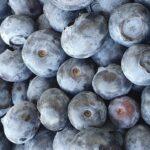 Frutas tratadas con Harvista