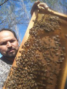 Eduardo Riquelme productor apícola